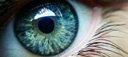 15 neįtikėtinų faktų apie mūsų akis